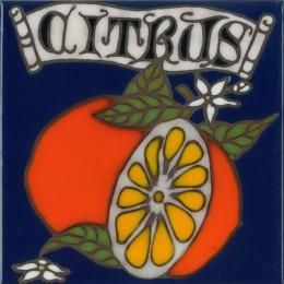 Citrus - Hand Painted Art Tile